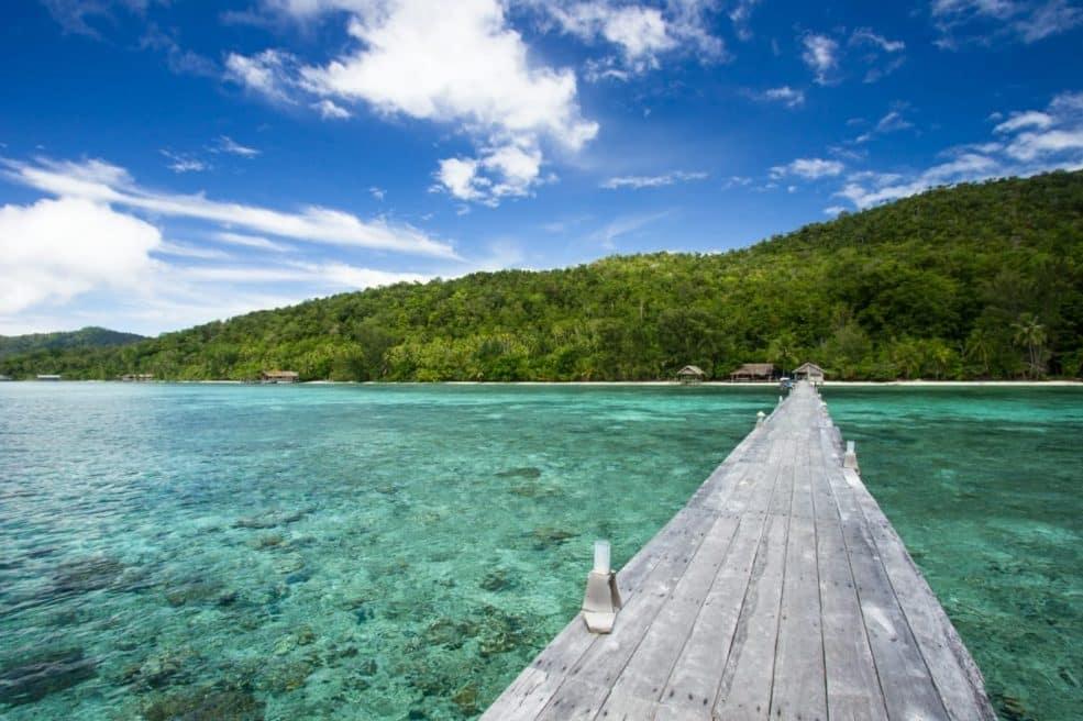 Pulau Waigeo