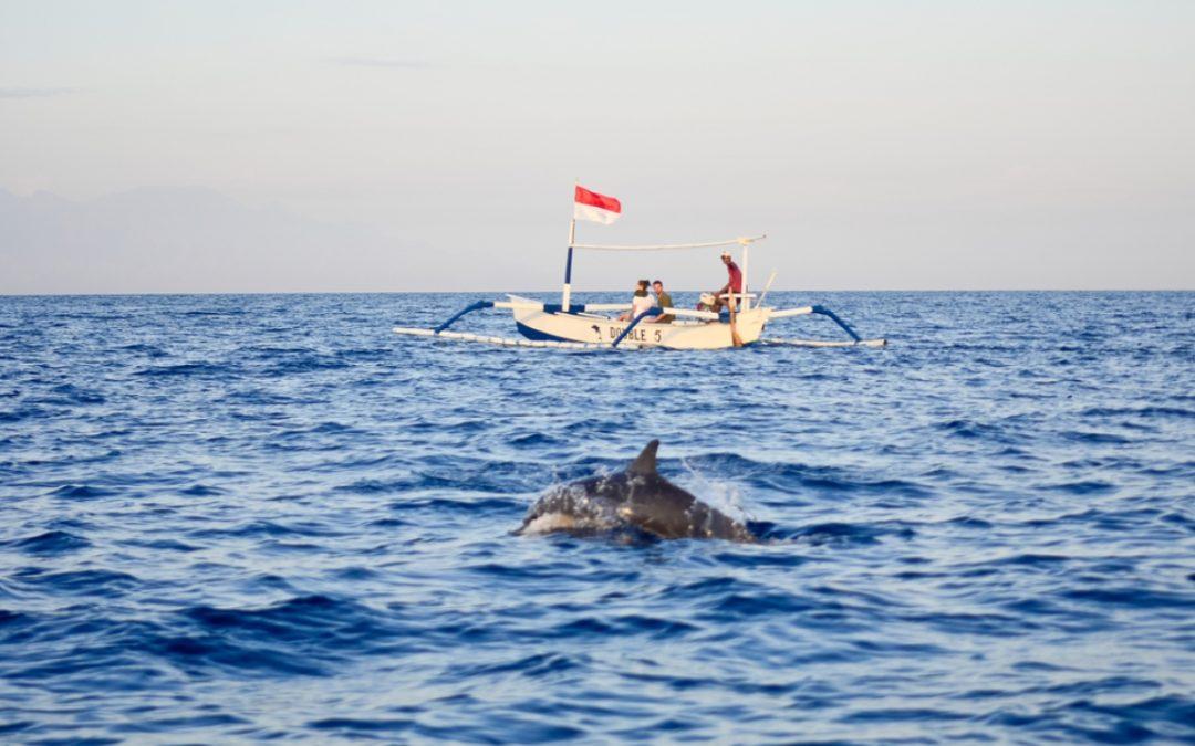 Pantai Lovina Bali, Sensasi Liburan Bersama Lumba-Lumba