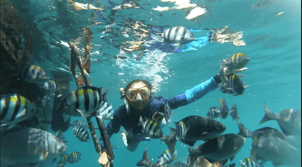 Foto Ikan Pantai Bangsring