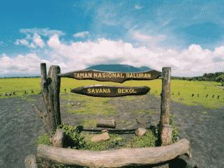 Taman Baluran Banyuwangi, Afrika di Ujung Timur Pulau Jawa