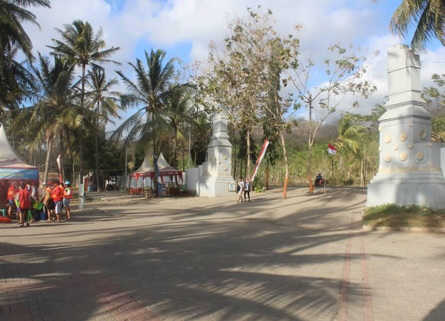 ohon kelapa yang berjejer di sisi pantai