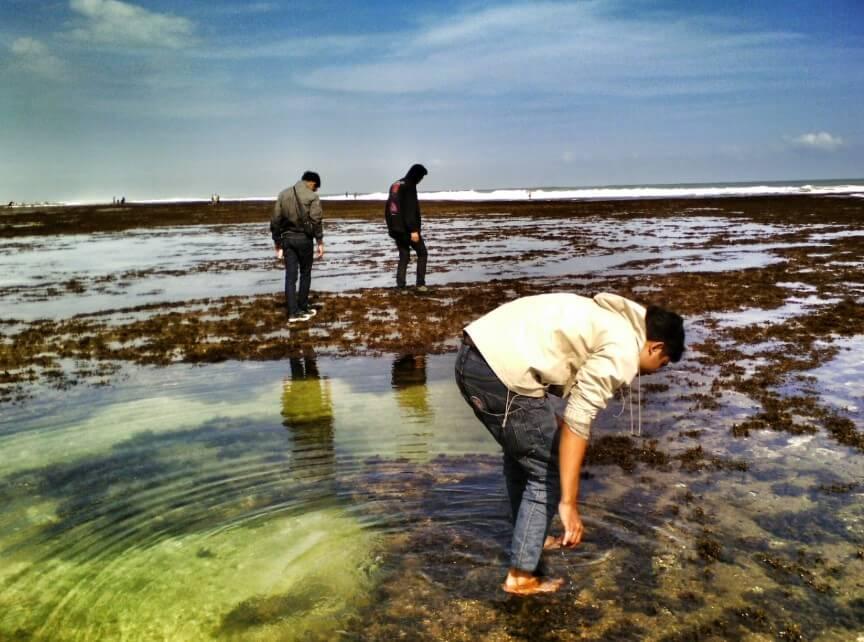 Ikan Hias di Pantai Muaragatah