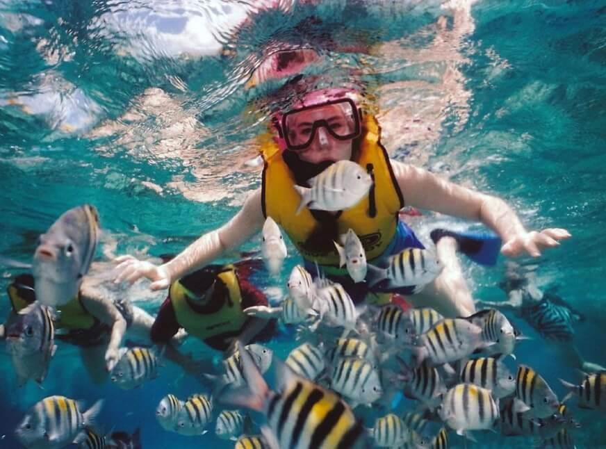 Snorkeling di Padang Bai