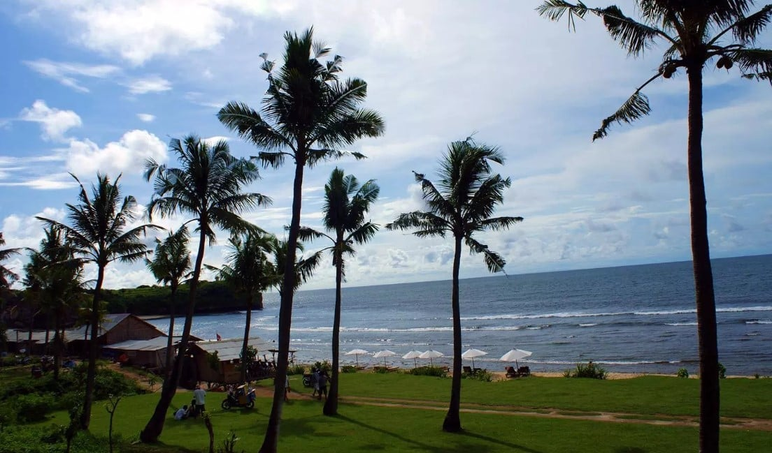 Pantai dengan Jajaran Pohon Kelapa