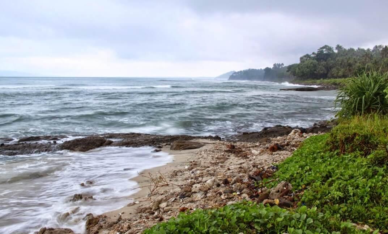 Biota Laut Pantai Karapyak