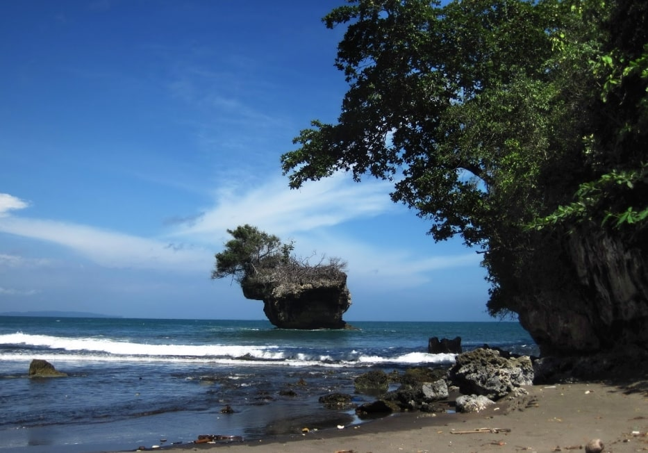 Pantai Madasari Pohon Ketapang