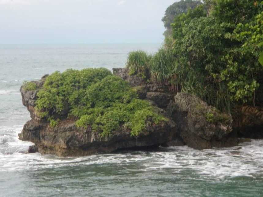 Tebing Pantai Pangalek