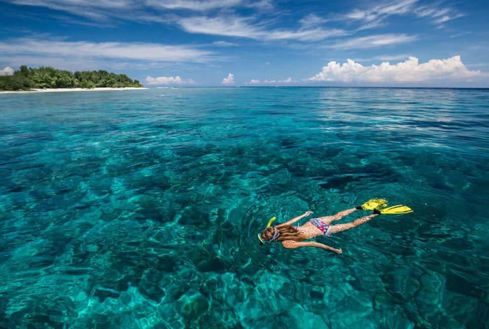 Snorkling atau Diving