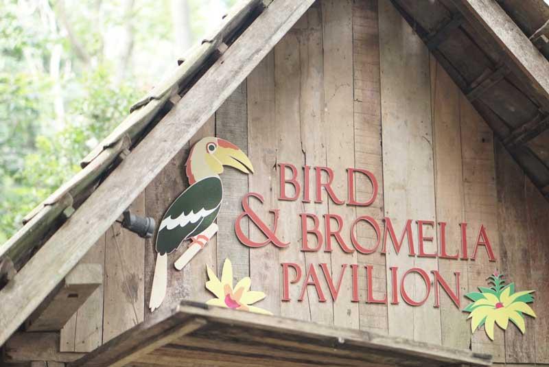 Bird and Bromelia Paviliun Bandung: Ajak si Kecil Bermain dan Belajar!