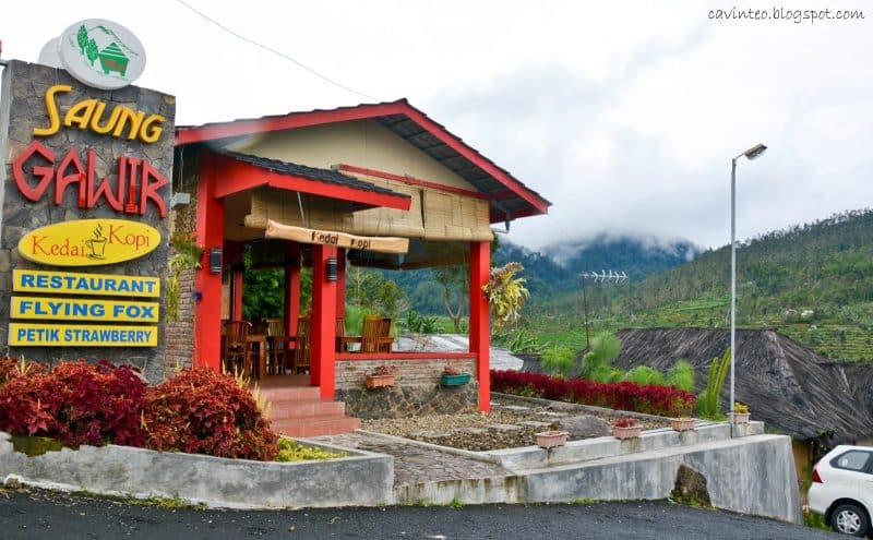 cafe gunung ciwidey