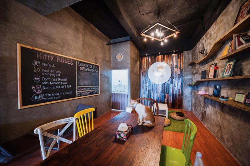 17+ Cafe di Kemang yang Instagrammable, Murah, dan ada Live Music