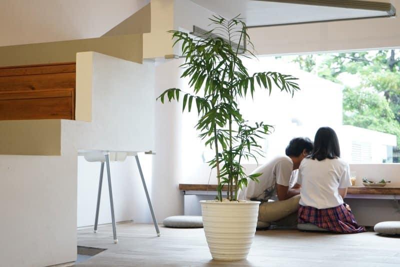 25+ Cafe di Kebun Raya Bogor, Instagrammable!
