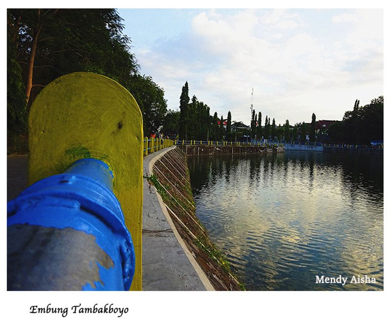 Embung Tambakboyo Jogja : Tempat Jogging Romantis Semua Kalangan!