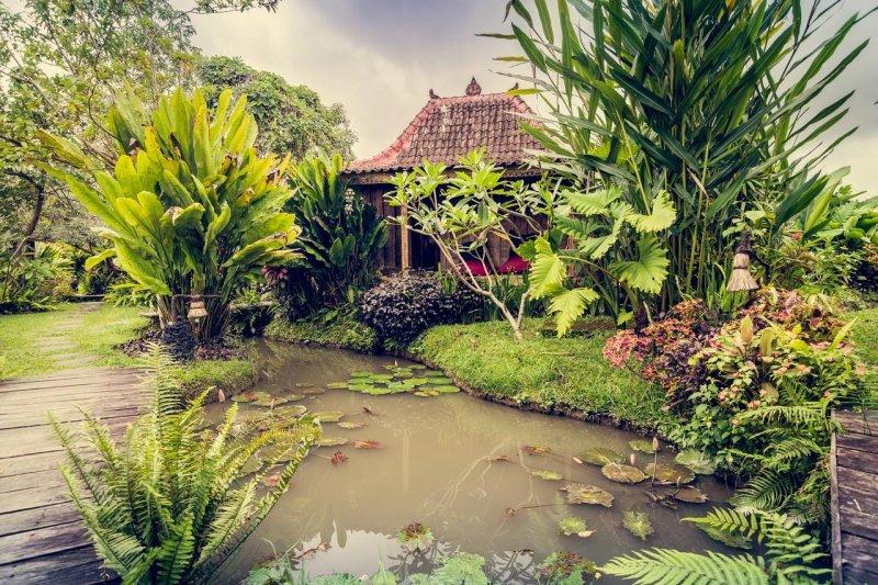 Cafe di Ubud yang alami