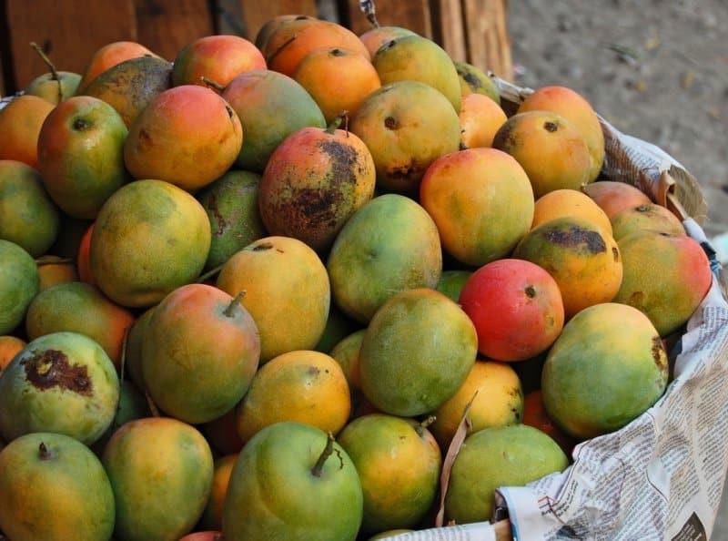 buah khas majalengka