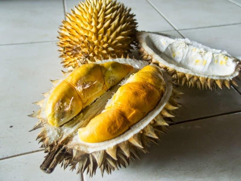 buah durian khas majelengka