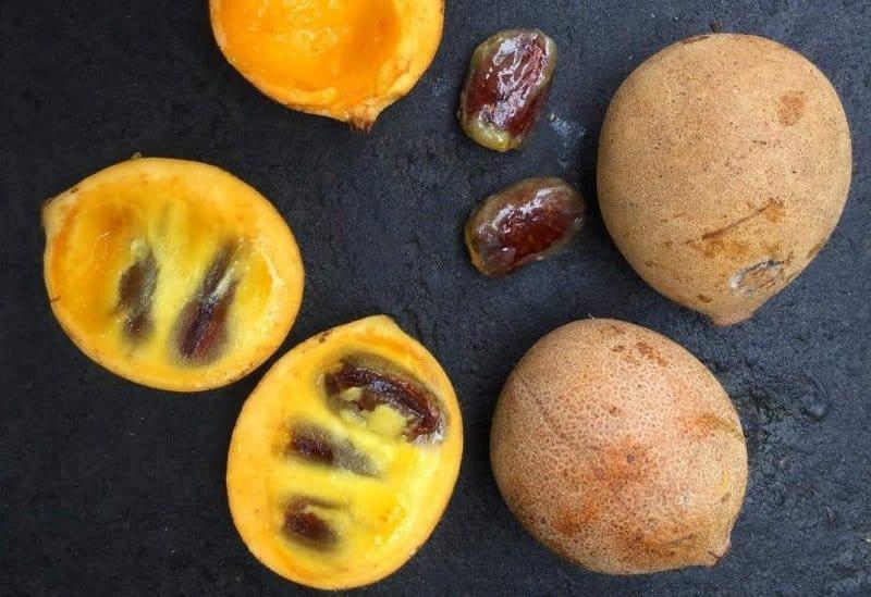buah kepel khas klaten