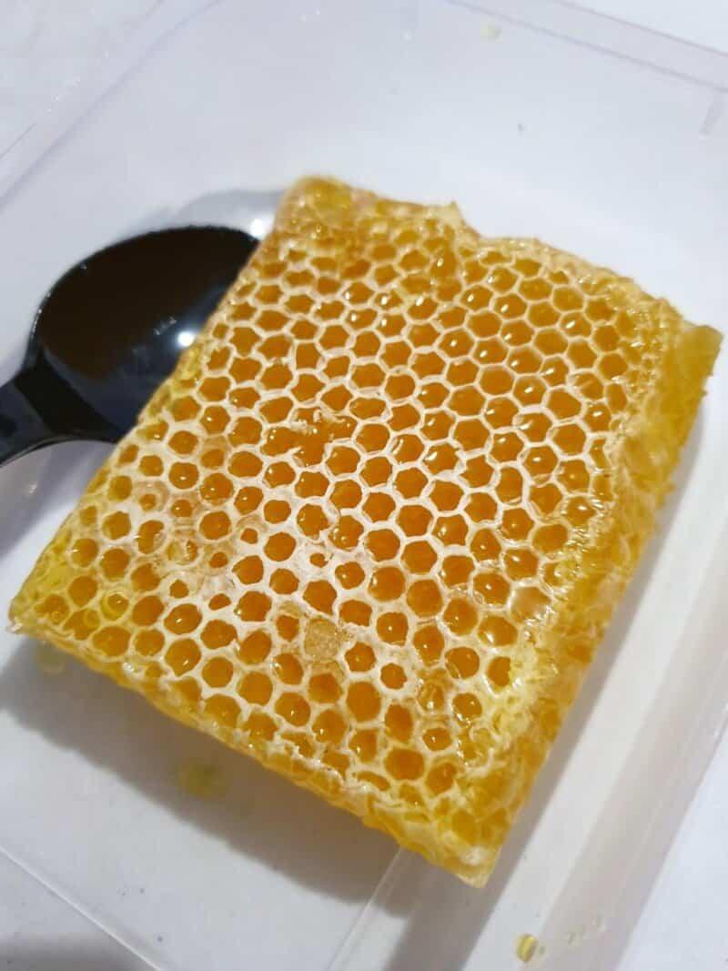 oleh-oleh khas pati sarang madu