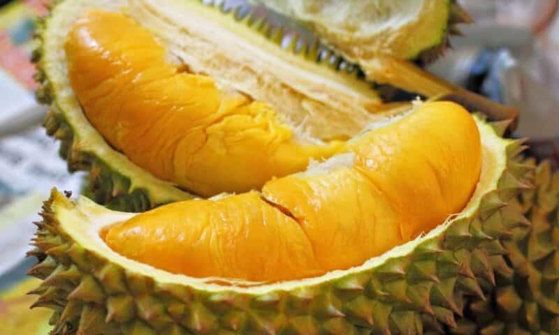 Durian-Petruk