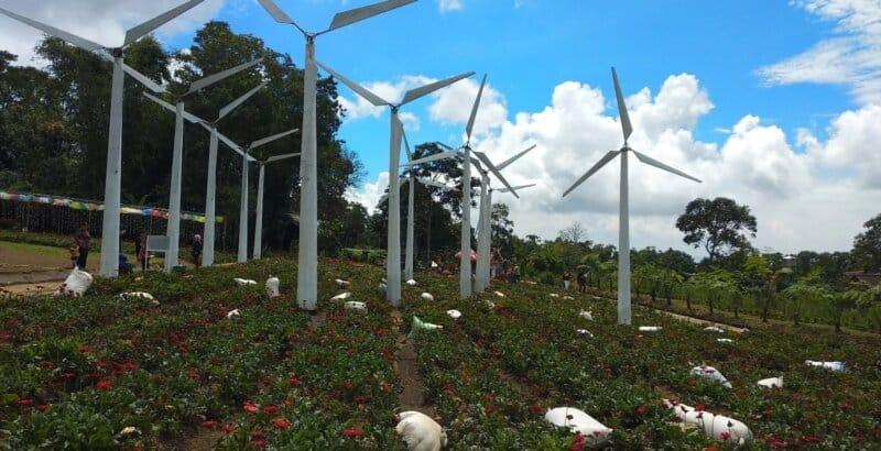 Bandungan-Flower-Garden