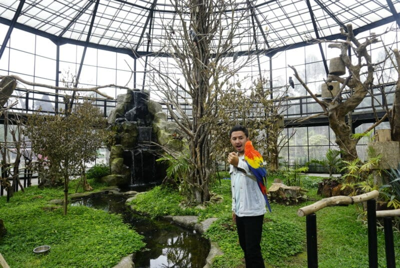 Lembang-Park-and-Zoo