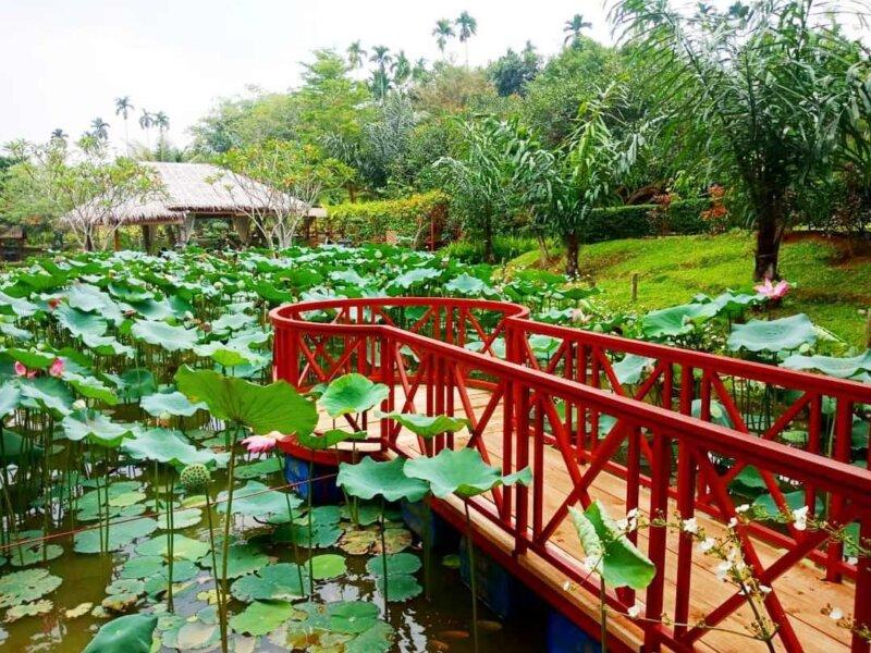 The-Le-Hu-Garden