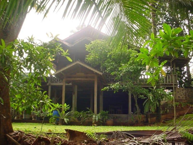 Wisata-Alam-Kampung-99-Pepohonan