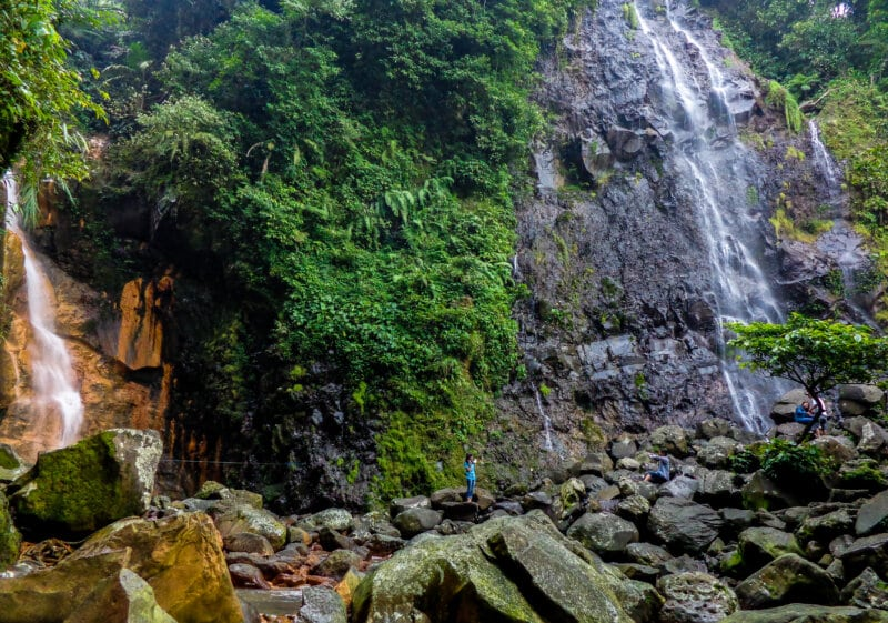 Taman-Nasional-Gunung-Halimun-Salak