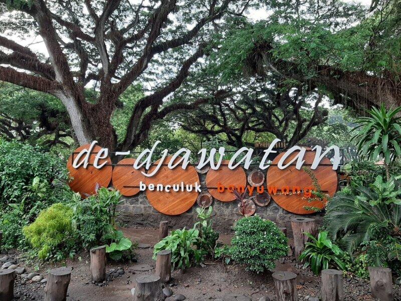 Kafe di Bawah Rimbunan Pohon Trembesi