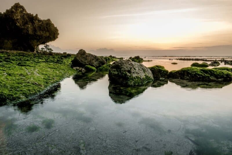 Lokasi dan Rute Menuju Pantai Plengkung