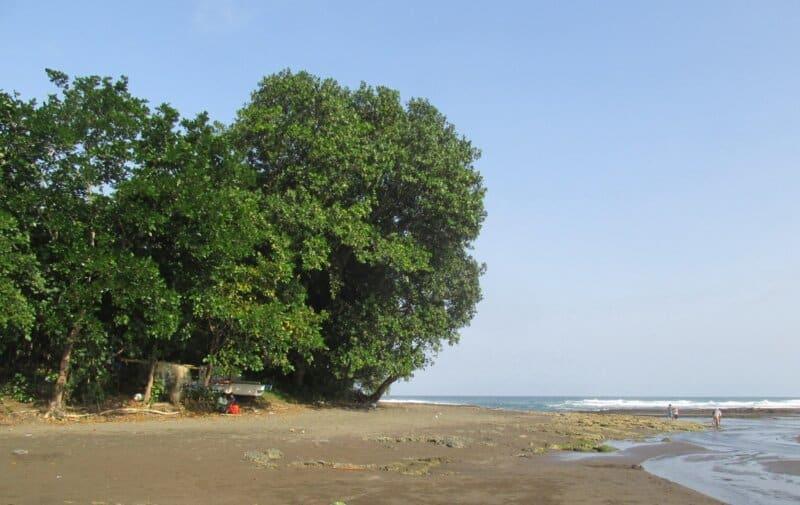 Tepian Pantai yang Bersih