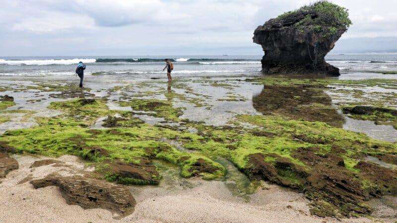 Cekungan Batu Karang di Tepian Pantai