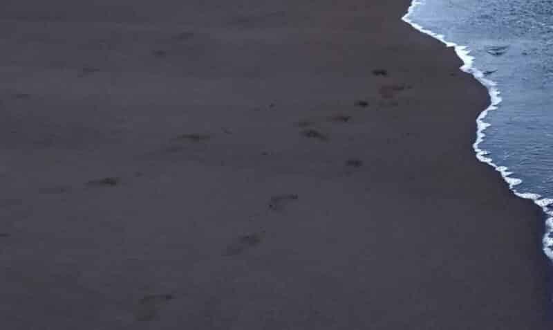 Pasir yang Bersih dan Lembut