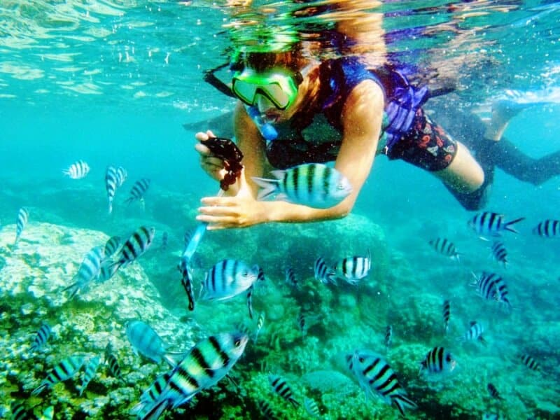 Aktivitas Snorkeling